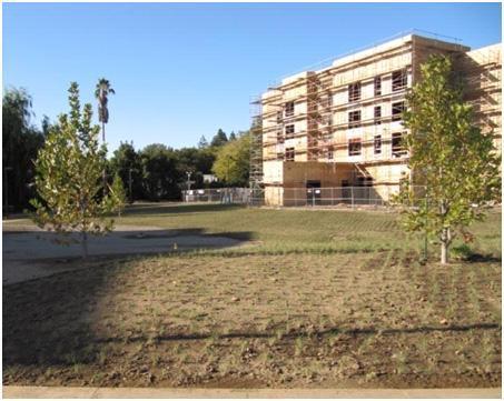 UC Verde planting - UCD, September 9, 2009